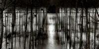 """Mostra fotografica """"Paesaggi Italiani"""" George Tatge al Museo in Trastevere - Mostre Roma Marzo-Aprile 2009"""