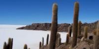 Vacanze Avventura in Bolivia per un Turismo Ecosostenibile: offerte viaggio Tour in Bolivia