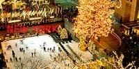 Offerta viaggio a New York dal 1 al 14 Dicembre 2009: lo shopping di Natale a New York e gli eventi di Natale
