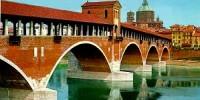 Punta su Pavia 2009: eventi, visite guidate e mostre a Pavia dall' 8 Novembre al 6 Dicembre 2009