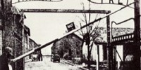 Mostre Roma Febbraio-Marzo 2010: la mostra su Auschwitz al Complesso del Vittoriano di Roma