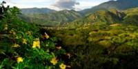 Turismo Sostenibile Offerta viaggio Tour Ecuador 2010: Quito-Otavalo-Mindo-Cotopaxi-Amazzonia