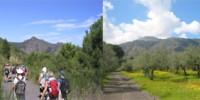 Turismo Religioso: pellegrinaggio a Pompei attraverso il Parco Nazionale del Vesuvio dal 25 al 27 Giugno 2010