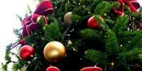 La Fiera di Natale 2010 a Cagliari dal 10 al 19 Dicembre 2010. Il mercatino di Natale a Cagliari - Fiera Evento