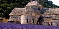 Vacanze in Provenza: una regione della Francia tutta da vedere per un itinerario di viaggio tra cultura e relax