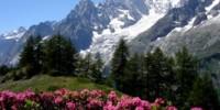 Vacanze in montagna in Valle D' Aosta: il Monte Bianco, escursioni in mountain bike e Terme di Pré-Saint-Didier