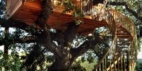 Agriturismo in Lazio: ad Arlena di Castro (Viterbo) un agriturismo con le case sugli alberi