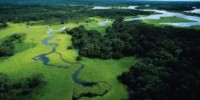 Viaggio in Amazzonia (Brasile-Sud America): vacanze nella foresta amazzonica del Brasile