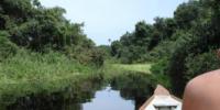 Viaggio in Brasile nella foresta dell' Amazzonia: le escursioni da fare in Amazzonia. Guida Vacanze