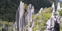 Viaggio nel Borneo (Malesia) a Sara Sarawak: il parco naturale di Gunung Mulu. Guida vacanza nel Borneo