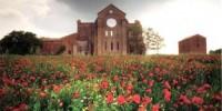 Viaggio in Toscana: abbazia di San Galgano con l' Eremo di Montesiepi (Siena)