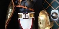 """Museo delle Mura-Roma: mostra """"Armi dei Romani"""" fino al 15 Dicembre 2012"""