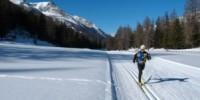 Sciare in Molise a Capracotta (Isernia): sci di fondo, sci alpino e snowboard