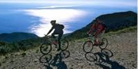 Cicloturismo ad Istria: percorsi guidati in bicicletta per le vacanze ad Istria