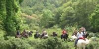 Vacanze in Toscana: trekking e passeggiate a cavallo nella Maremma Toscana