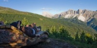 Trentino Alto Adige: nordic walking, escursioni in mountain bike al The Vista Hotel