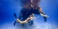 India-isole Andamane: vacanza ad Havelock Island per fare snorkeling con un elefante