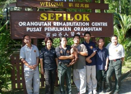 role of orang utan rehabiltation centra Visiting sepilok orang-utan rehabilitation centre in borneo.