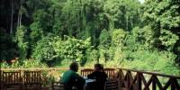 Tour Borneo: Stato malese del Sabah. Da giugno ad agosto il periodo migliore