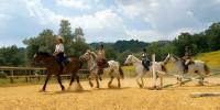 Grosseto-Toscana: agriturismi con maneggio, lezioni di equitazione, piscina all' aperto