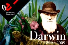al-palazzo-delle-esposizioni-di-roma-la-mostra-darwin-1809e280932009-fino-al-3-maggio-2009