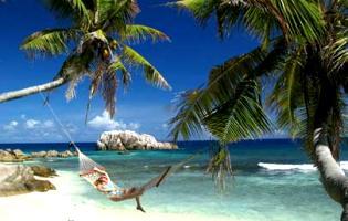 viaggio-alle-seychelles-all-isola-di-cousine-island-una-riserva-naturale-protetta-nelle-seychelles-di-praslin