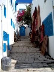 viaggio-in-tunisia-la-medina-di-tunisi-cartagine-e-sidi-bou-said-offerte-viaggio-vacanze-in-tunisia-voli-e-hotel