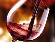 enoturismo-e-festa-della-vendemmia-ad-ottobre-2009-a-poggiotondo-subbiano-arezzo-il-vino-del-casentino