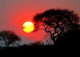 offerte-viaggio-in-sud-africa-immersioni-e-safari-in-sud-africa-pacchetto-viaggio-e-soggiorno-in-sudafrica