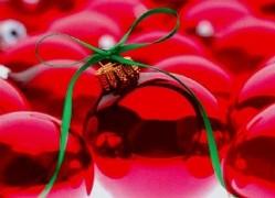 Natale in Fiera 2009 a Forlì la fiera di Natale dal 27 al 29 Novembre 2009. Lo shopping di Natale a Forlì