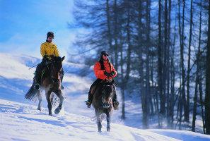 Vacanze Benessere in Trentino Alto Adige equitazione sulla neve e Centro Benessere Spa a Pedraces