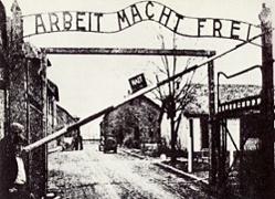 Mostre Roma Febbraio-Marzo 2010 la mostra su Auschwitz al Complesso del Vittoriano di Roma